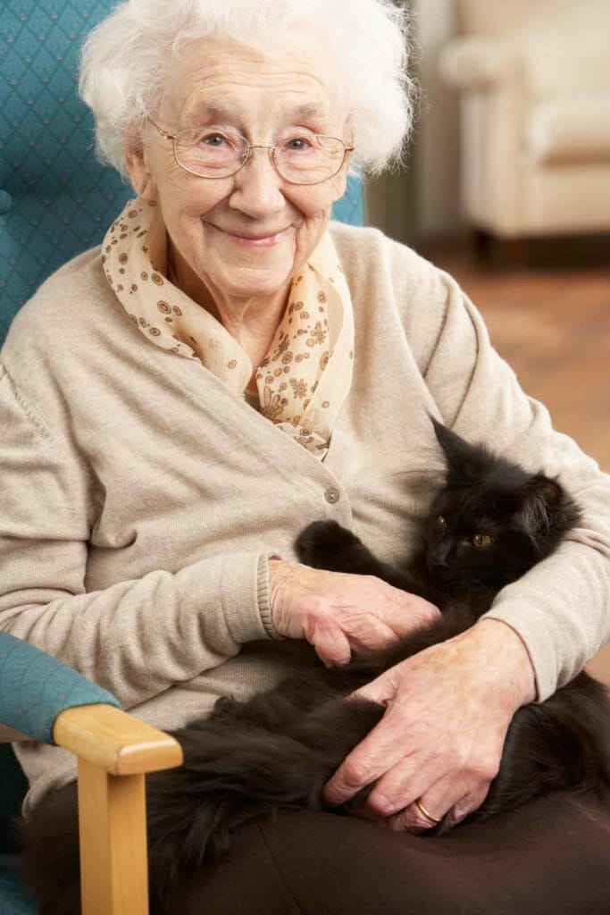 Elderly lady with white hair and glasses looking at the camera